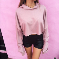 Light Pink Long Sleeve Hoodie Crop Sweatshirt