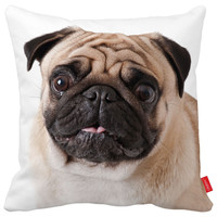Pug Dog Pillow