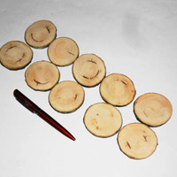 Wood Slices 10 Pieces-Rustic Wooden Slices-Weddings-Favors-Crafts & More-Set Of 10 Blank Wood Slices For Supplies-Wood With Bark