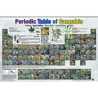 Periodic Table of Cannabis - Spencer's