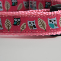 Owl Dog Collar Night Owls 3/4 Wide Pink by GreenMountainDogs
