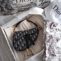 DIOR MINI DIOR OBLIQUE SADDLE BAG