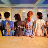 Pink Floyd - Back Catalogue Photo at AllPosters.com