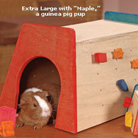 Small Pet: Sleepers & Hideouts: Ware Manufacturing Gnawsome Hut and Gnawsome Treats