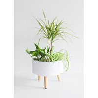 Parkview White Plant Stand