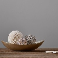 SPIKEY SHELL SPHERES