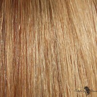 """21"""" Clip In Remy Hair Extensions: Light Brown/ Golden Blonde No. P8-24"""