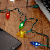 Holiday Lights Phone Charger