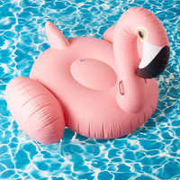 Flock on the Wild Side Pool Float in Flamingo | Mod Retro Vintage Decor Accessories | ModCloth.com