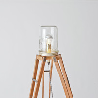 recycled furniture, eco furniture, sustainable lighting, eco lighting   Folklore