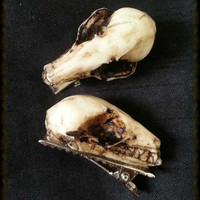 Natural tone Resin cast bat skull hair clip