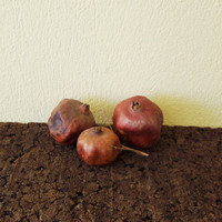 Dried pomegranates, set of three, naturally dried pomegrnates, shabby , rustic decor fruit, natural decor Greek pomegranates, various sizes