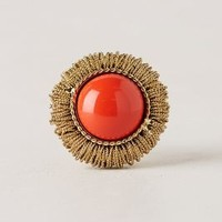 Braided Coronet Knob by Anthropologie Coral One Size Knobs