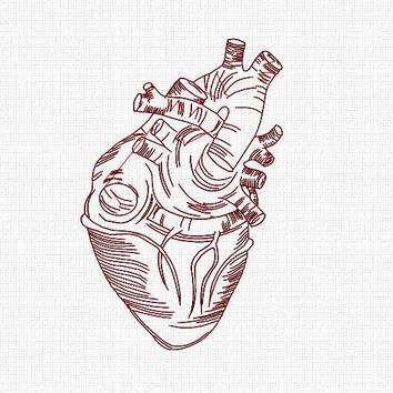 Anatomical heart embroidery design. Real heart 4x4 hoop embroidery design. Anatomically correct human heart embroidery design in 5 sizes.