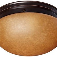 """Nuvo 60-2646 - 10"""" Close-To-Ceiling Flush Mounted Light Fixture"""