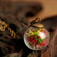 Magic fairy necklace, moss necklace, nature necklace, real moss necklace, terrarium necklace, magic forest necklace, glass vial necklace
