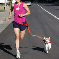 Dog Waist Leash for jogging