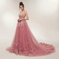 Evening Dresses Blush Tulle Prom Dress With Tulle Appliques