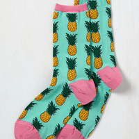 Tropics of Discussion Socks