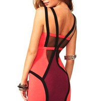Colorblock Body-con Dress with Mesh Panel Detail