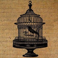 Bird Cage Birds Ornate Digital Image Download by Graphique on Etsy