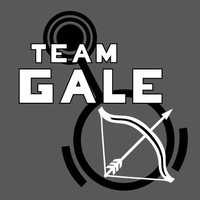 Hunger Games Team Gale T-Shirt with Bow and Arrow Graphic, Grey, SIZE EXTRA LARGE