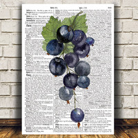 Blackcurrant art Dictionary print Kitchen print Berries poster RTA1716