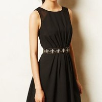 Escura Crepe Dress by Meadow Rue Black