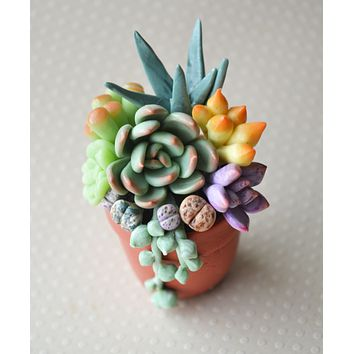 Mini Potted Succulent Arrangement Magnet , CLARITY