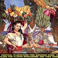 Bananas From Tropical Plantations Ad by Dean Cornwell Fine Art Print
