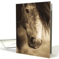 The Sepia Horse Blank Note Card