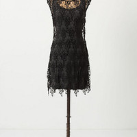 Coral Lace Dress - Anthropologie.com