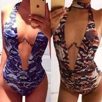 Animal Print Deep V One Piece Swimsuit