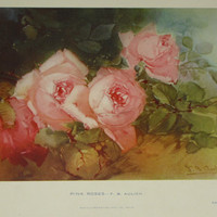 Victorian Roses antique lithograph - Pink Roses 1903