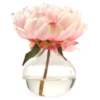 """One Kings Lane - Something Special for Mom - 7"""" Peony in Bubble Vase, Pink"""