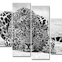 4pc Blue Eyed Leopard Canvas Picture Wall Art (No Frame)