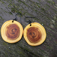 Big Natural Wood Earrings, Robinia (Black Locust) Wood Earrings, Hypoallergenic Niobium Ear Wire