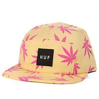 HUF The Plantlife Box Logo Volley in Maize : Karmaloop.com - Global Concrete Culture