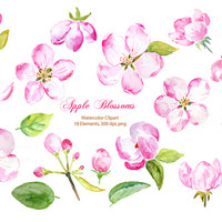 Hand Painted Watercolor pink apple blossoms pink flowers printable instant download for wedding invitations, greeting cards