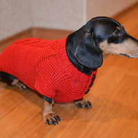 Red  dog Sweater Clothes Hand Knitting  dachshund medium dog fluffy cable Mohair ready to  ship