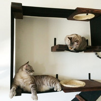 Vertical Cat Fort - Cat Hammock Play Structure