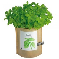 Garden in a Bag: Basil : Branch: Sustainable Design for Living