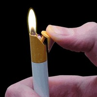 Cigarette Disguised Lighter