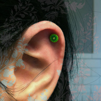 Kiwi fruit Surgical Steel Stud Earring. Perfect for Helix and Cartilage Piercings.