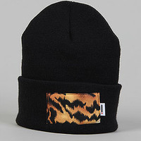 Apliiq The Tiger Beanie : Karmaloop.com - Global Concrete Culture