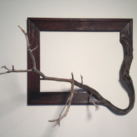 """Wood frame with grafted manzanita branch - """"Agnes"""""""