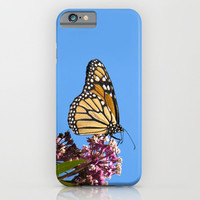 Butterfly Feeding iPhone & iPod Case by Christina Rollo