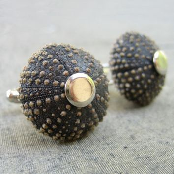 Sea Urchin Collection Cool Brown Cufflinks by StaroftheEast