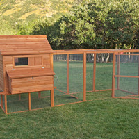 The Ranch Backyard Chicken Coop | Chicken Saloon