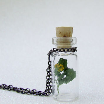 Yellow Clover Wildflower Necklace - Botanical Specimen Necklace - Real Flower Plant Necklace - Utah Wildflowers - Terrarium Bottle Necklace